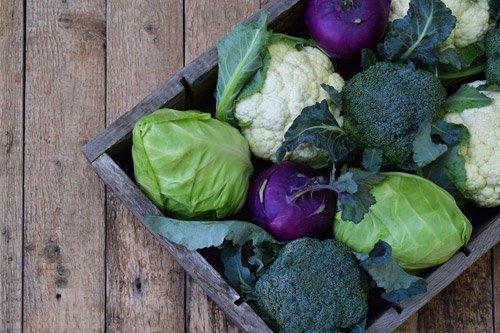 Crucíferas são hortaliças que fazem vem a saúde
