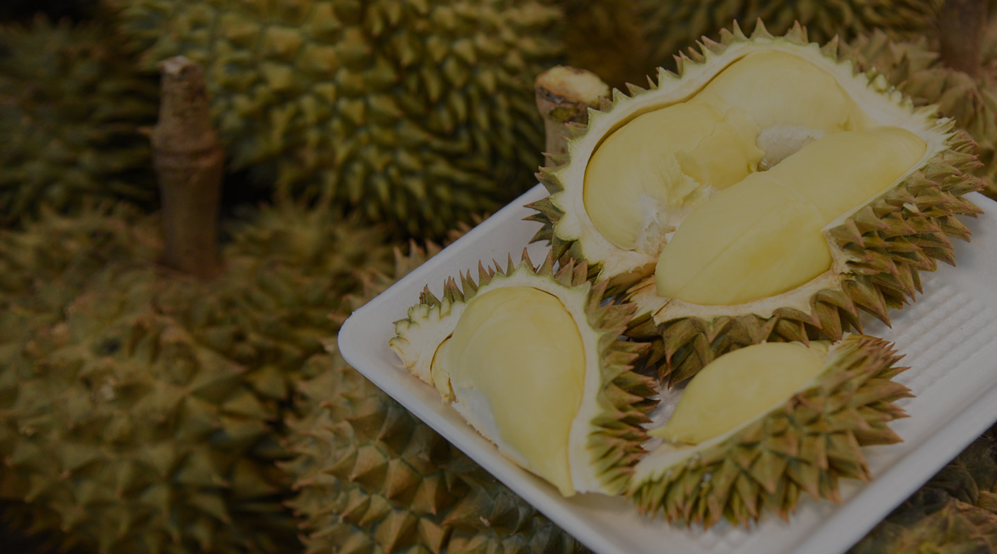 Durian home