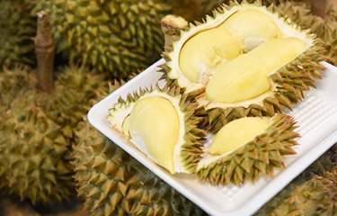 Durian mobile