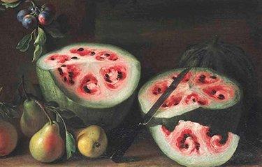 melhoramento genético de melancia